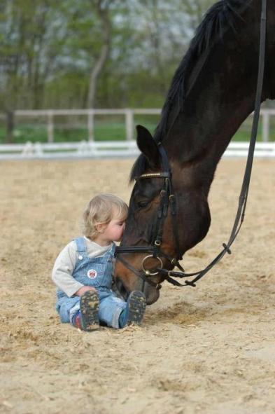 bambino-che-bacia-un-cavallo
