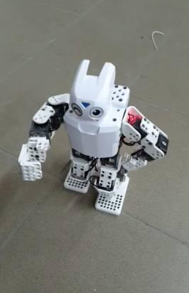 robot Majorana 2
